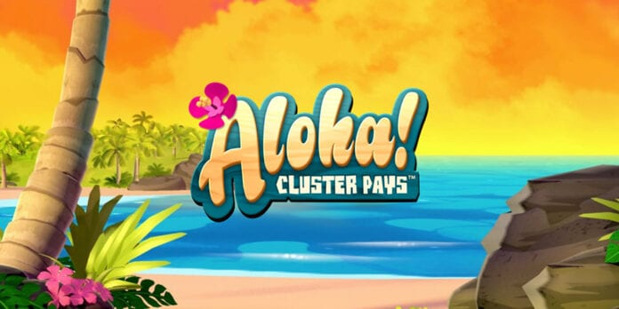 Den Hawaii-inspirerede Aloha spilleautomat byder bl.a. på Cluster Pays