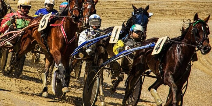 V75 er hestesportens kongeklasser. Her kan du vinde millionpræmier